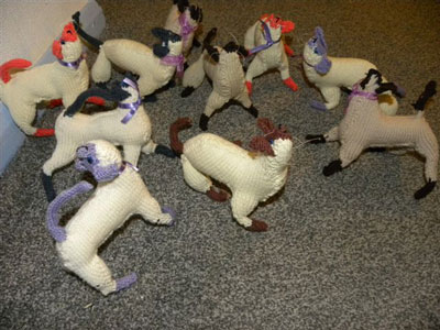 Knitted-Siamese-Cats-Supreme-2011-011