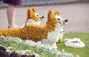 30-Corgi-flower-sculptures-at-Chelse-2012