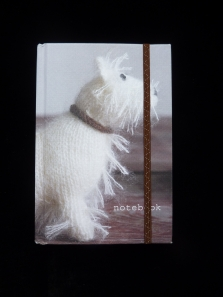 scottie_notebook