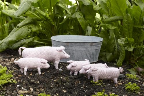 Pig & piglets