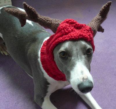 Reindeer Balaclava Muir Osborne